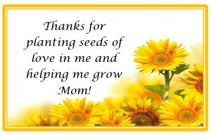 seeds of love free pirintable theresourcefulmama.com