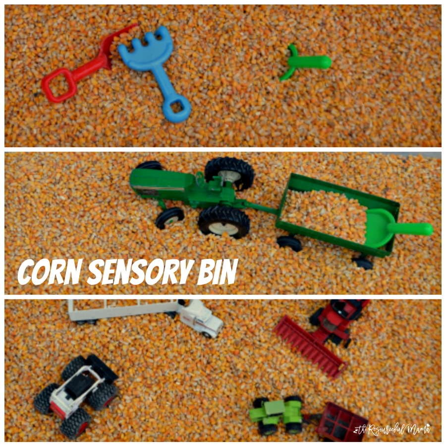 This fall harvest corn sensory bin offers kids a fun and tactile activity.