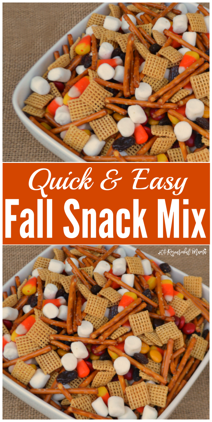 Quick & Easy Fall Snack Mix - The Resourceful Mama