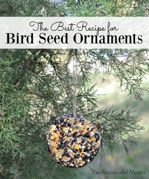The Best Recipe for Bird Seed Ornaments