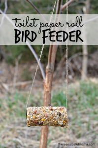 Reuse toilet paper rolls to make homemade bird feeders. This is a great Earth Day project for kids.