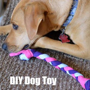 Make your own DIY dog toys by repurpsoing old tshirts. Great upcycle project for kids or adults.
