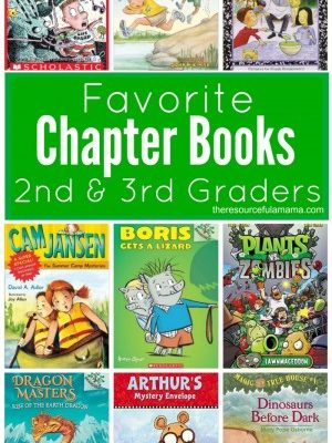 Chapter Books for 2nd & 3rd Graders