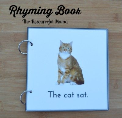 The Cat Sat Rhyming Book