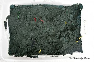 "Kids will have fun digging for worms in the this ""dirt"" made from baking soda and food coloring."