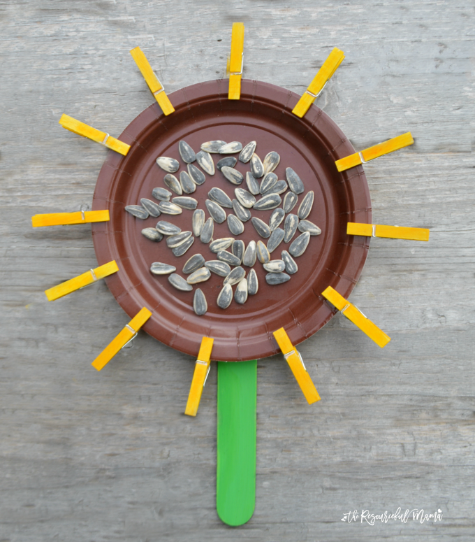 This paper plat sunflower is a great craft for kids to make in late summer and early fall. Squeezing clothespins is a great way to build and strengthen fine motor skills. preschool|kindergarten|flower|kid craft