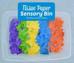 Tissue Paper Senosry Bin