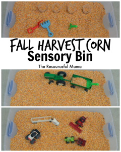 We of the best things about fall is harvest and playing in the corn! This corn sensory bin is so easy to make and will provide hours of fun!