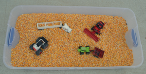 Fall Harvest Corn Sensory Bin