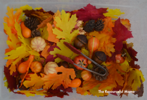 Fall sensory bin incorporating several levels of learning for preschoolers.