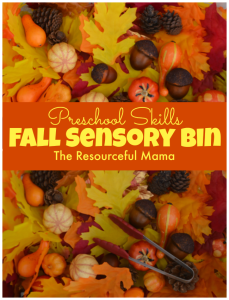 Fall sensory bin great for working preschool skills: fine motor, comparisons, patterns, counting, textures, colors, and more.
