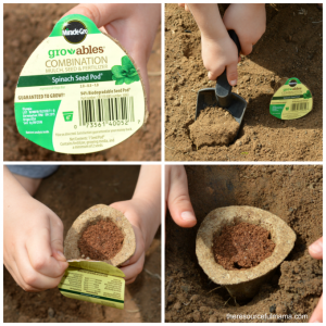 Planting Miracle Gro Growables and tracking seed observation with a free printable.