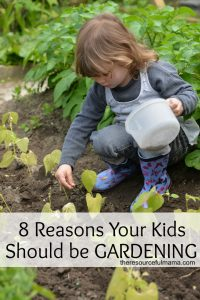 There are many benefits of gardening. Gardening offers a fun and hands on learning experience for kids while fostering understanding and growth.