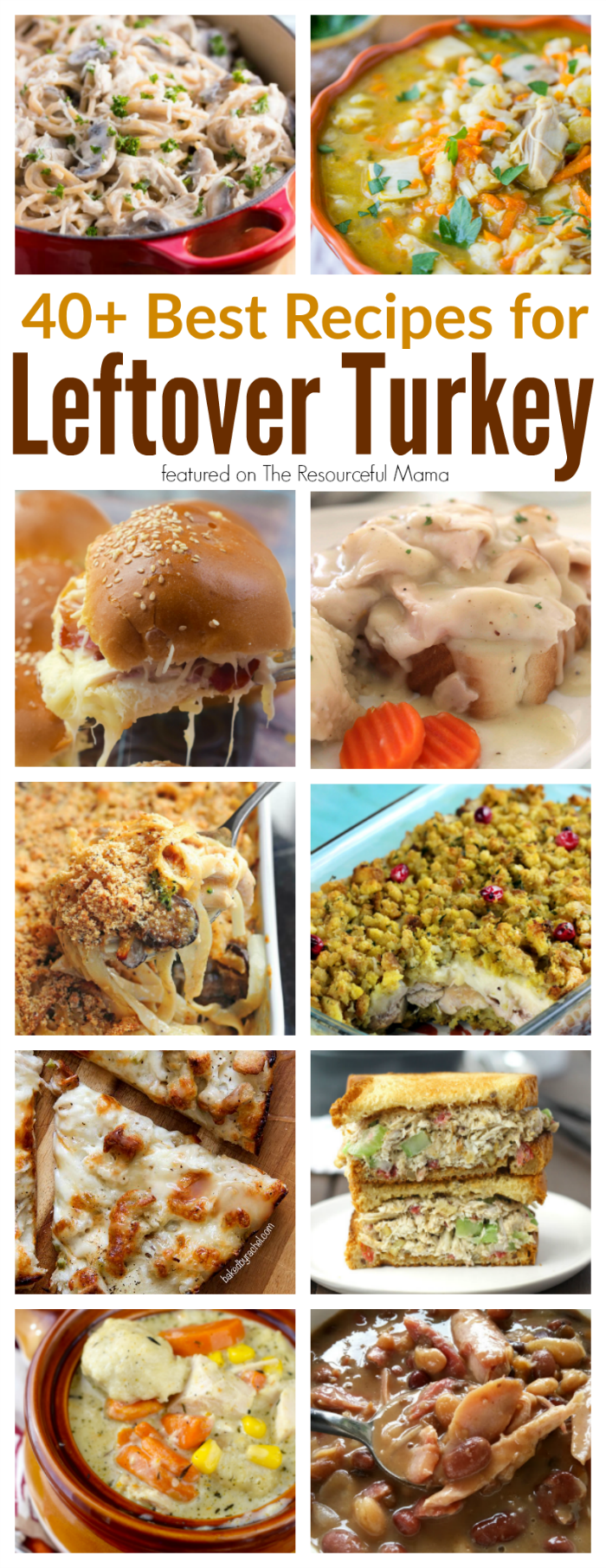 Transform leftover turkey from Thanksgiving into some amazing recipes including : casseroles, soups, sandwiches, pizza and more.