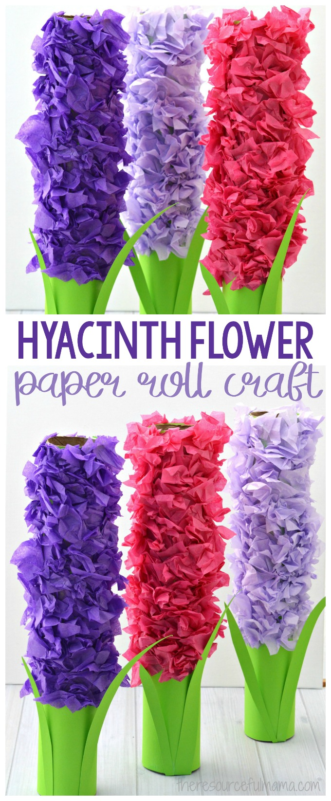 Transform paper towel rolls and tissue paper into a lovely hyacinth flower craft kids can make this spring.